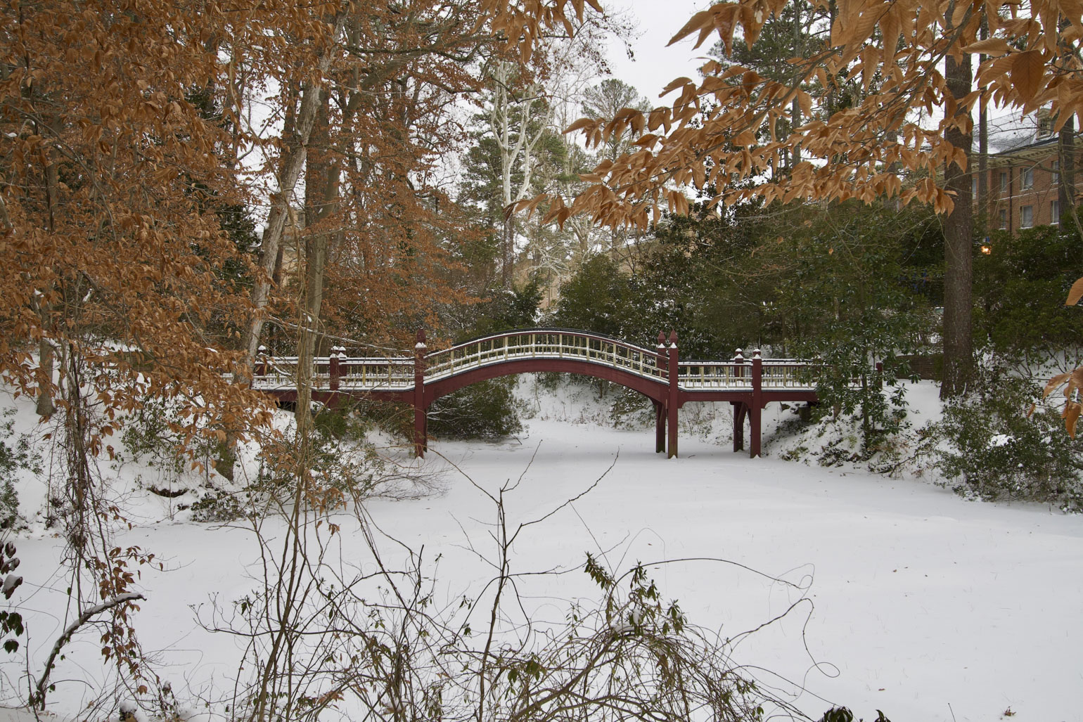 winter-wonderland-at-william---mary-photo0.jpg